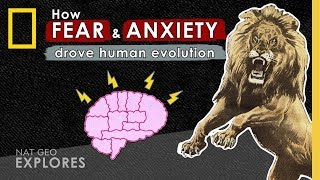 How Fear and Anxiety Drove Human Evolution   Nat Geo Explores thumbnail