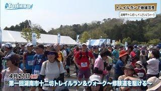 2019年5月17日放送分 SOSE編集部