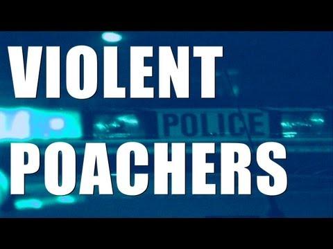 Fieldsports Britain – Violent poachers, Tackle & Gun Show, rifle/scope combos