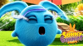 Videos For Kids | Sunny Bunnies SUNNY BUNNIES CRYING BUNNY | Funny Videos For Kids