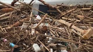 西日本豪雨災害で大量に流れついた流木やゴミ