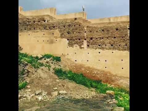 Femme marocaine cherche homme marocain