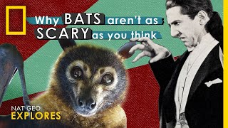 Why Bats Aren't as Scary as You Think | Nat Geo Explores thumbnail
