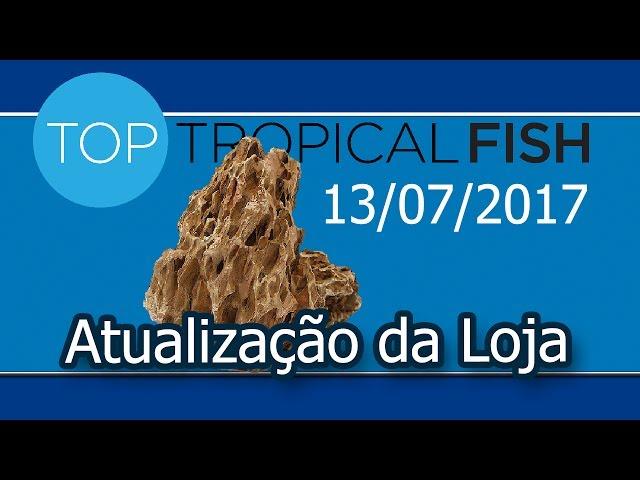 Top Tropical Fish - 13/07/2017 - Dragon Stones,  novos Troncos e muito mais !