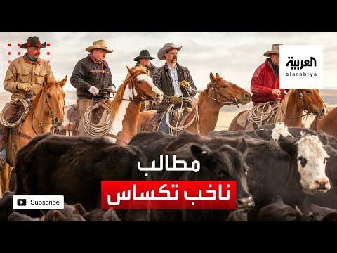 العرب اليوم - شاهد: هذا ما يريده الناخب في تكساس قبل 5 أيام من الانتخابات