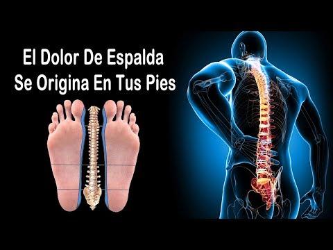 Clínica de la columna vertebral y las articulaciones sanas buena salud