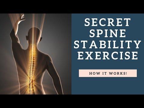 La structure des muscles pour le masseur