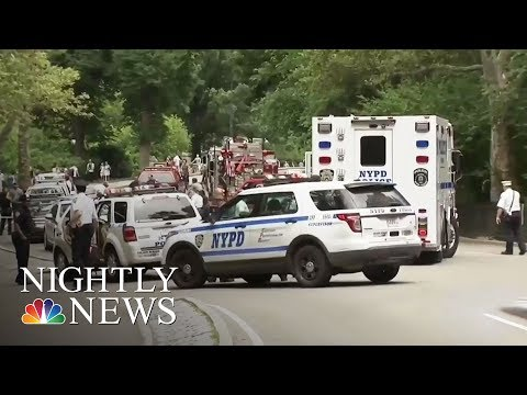 One Year Later, NYPD Still Searching For Clues In 2016 Central Park Explosion | NBC Nightly News