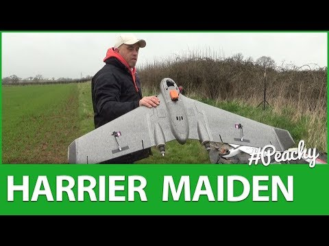 reptile-harrier-s1100-maiden-flight--overview