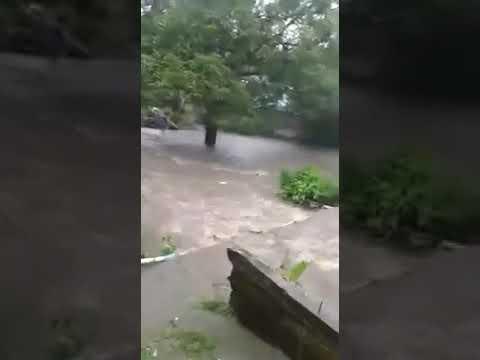 Homem pula na correnteza pra salvar cachorro que foi puxado pela água