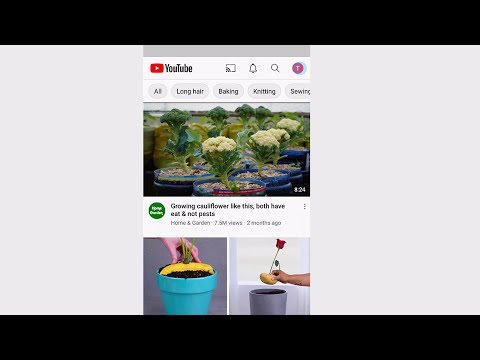 How to Delete YouTube Videos on Your Phone (2021)