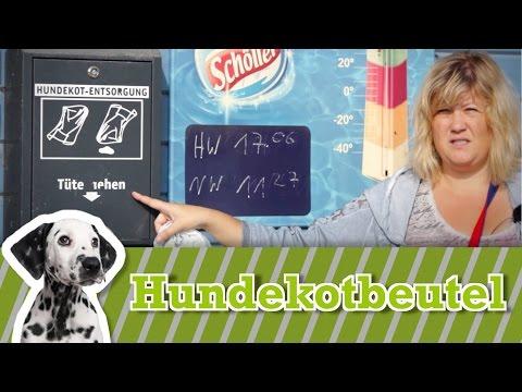 Hundekotbeutel - Hundekot richtig entsorgen
