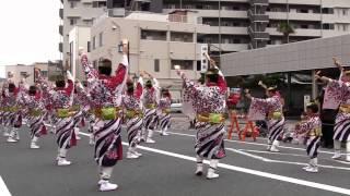 舞華(よさこい東海道2012本祭・本町審査会場・百花繚乱~心ひとつに~)
