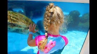 Дельфинарий в США Флорида, встретили рыбку Доди