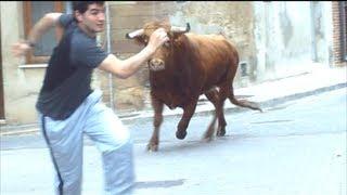preview picture of video 'Cabanes Ganaderia Hnos Miro y algun recortador Festejes Taurinos70513 Ntra Sra Buensuceso'