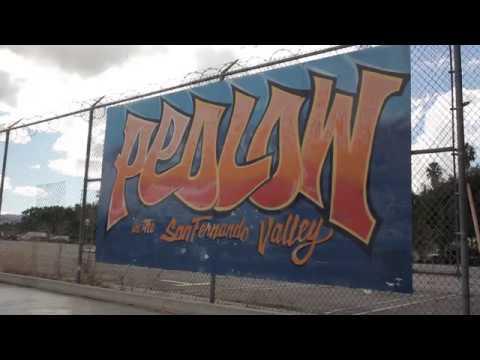 Skatepark Tours | Pedlow Skatepark