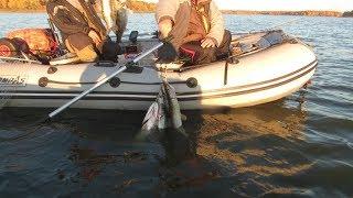 Северное рыбалка истра