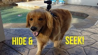 OSHIE PLAYS HIDE AND SEEK | Oshies World