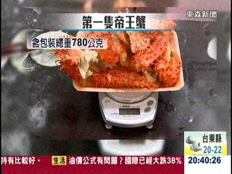 [東森新聞HD]實測!   隨機買2隻帝王蟹 含冰率皆逾3成