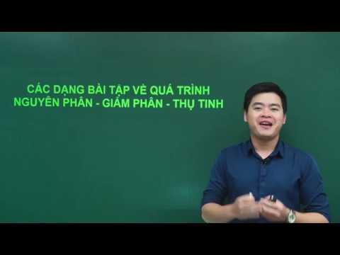 Sinh học 9: Các dạng bài tập về quá trình nguyên phân – giảm phân – thụ tinh, thầy Nguyễn Đức Hải