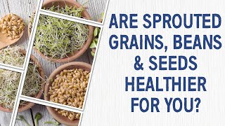 Ask Dr. Gundry: Are sprouted grains, beans & seeds healthier for you?