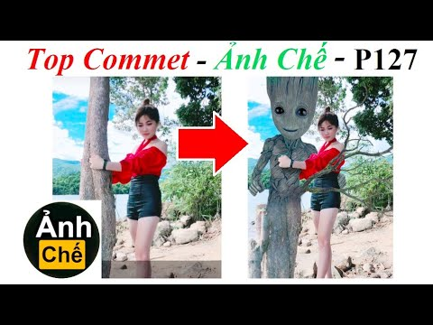 💥Top Comment Ảnh Chế  – Photoshop Troll (P 127), James Fridman, i am groot