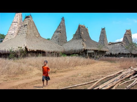 Indonesia - A Tour On The Island Of Sumba