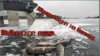 Отчеты рыбалки рыбинского водохранилища