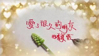 """田馥甄  愛了很久的朋友  (電影""""後來的我們""""插曲) 歌詞版"""
