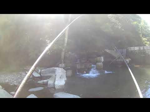 Il motoledobura per pescare come scegliere