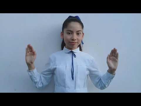 Video: Alumnos cantan el Himno en lengua de señas