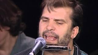 Steve Earle and The Dukes - The Rain Came Down