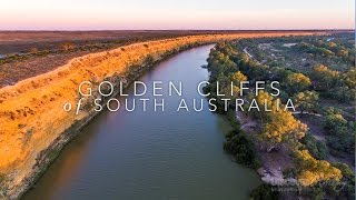 Murray River Bird aerial video - Golden Cliffs of South Australia - Discover Murray River