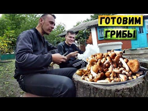 Сбор и приготовление грибов в Винницкой области | В гостях у @Яцкоборовский