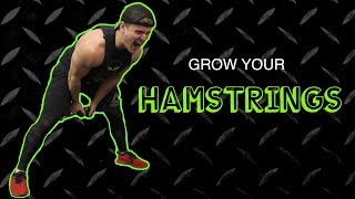 Intense Hamstrings Finisher Workout Routine   Anabolic Superset by Anabolic Aliens