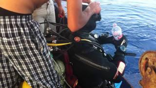 Plongee Corail