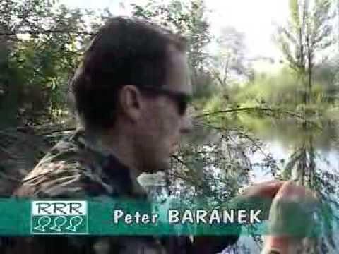 TV relácia RRR 2005-17 (20.08.2005)