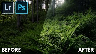 Creating A Dark, Moody Forest Landscape In Lightroom & Photoshop | QE #79
