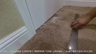 How To Patch Carpet In A Doorway (Business Promo - Time Lapse)