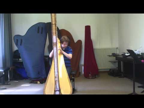 ARPARCO Violine und Harfe video preview