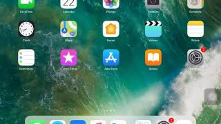 How to delete apps on iOS 11 on an IPad/IPhone