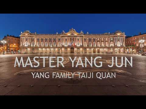 1er Stage de Maitre Yang Jun à Toulouse