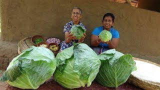 Cabbage Rice prepared by Grandma and Daughter ❤ Village Life