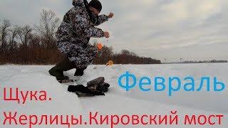 Рыбалка на жерлицы в самарской области форум