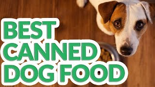 Best Canned Dog Food 2019 - 8 TOP Canned Dog Foods