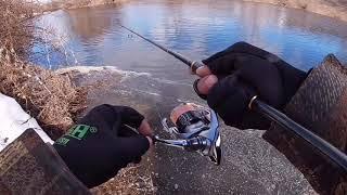 Ловля щуки осенью на реке проня