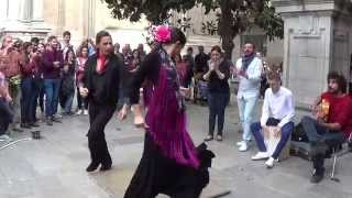 Flamenco dance (7) in Granada 2015