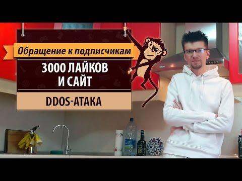 3000 лайков и сайт leshaigraet.ru