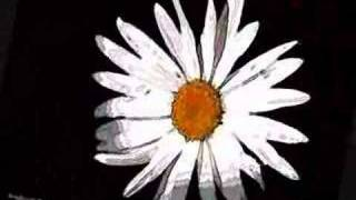 Across the Universe - Blackbird singing / oh Girl~ mix