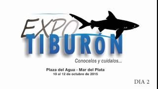 EXPO TIBURON - DIA 2